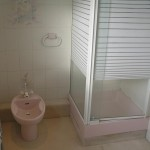 old-bidet-and-shower-cubicle
