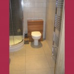 overview-of-toilet-cistern-and-shower